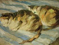 F.Marc, Zwei graue Katzen (Studie II) by AKG  Images