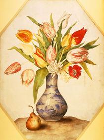 G.Garzoni, Tulpen und Birne by AKG  Images