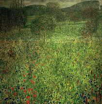 Gustav Klimt, Gartenlandschaft by AKG  Images