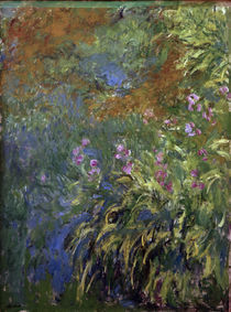 C.Monet, Iris am Teich by AKG  Images