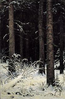 I.I.Schischkin, Tannenwald im Winter von AKG  Images