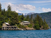 Halibut Cove by Ken Williams