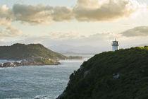 Naufragados Beach Lighthouse by Ricardo Ribas