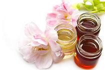 'honey and tulips' by Carla Zagni