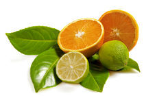 Orange and lime by Carla Zagni