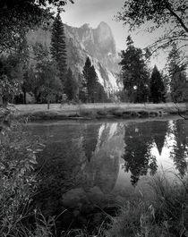 Reflection, Yosemite National Park von Alex Soh