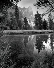 Yosemitealexsoh-ltm200018