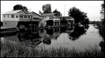 Swamp Houses by Graham Hughes