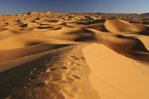 Morocco, Central Morocco, Merzouga by Jason Friend