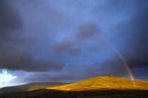 England, Northumberland, The Pennine Way by Jason Friend