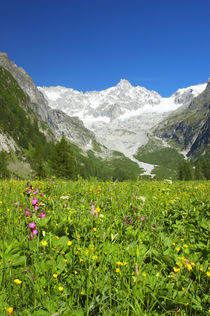 Switzerland Valais Val Ferret