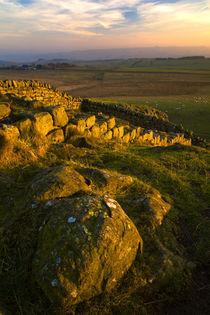 England, Northumberland Hadrians Wall. by Jason Friend
