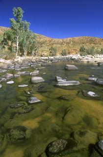 Australien, Northern Territory, West MacDonnell National Park von Jason Friend