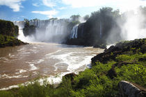 Argentinien, Misiones, Iguazu Nationalpark von Jason Friend