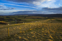 England, Northumberland, Northumberland National Park von Jason Friend