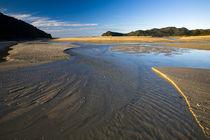 Neuseeland, Nelson, Abel Tasman National Park von Jason Friend