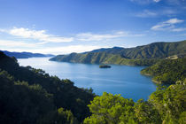Neuseeland, Marlborough, Queen Charlotte Sound von Jason Friend