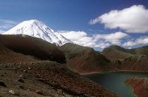 New Zealand, Central Plateau, Tongariro National Park by Jason Friend