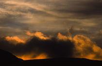 Schottland, Dumfries & Galloway, Galloway Forest Park. von Jason Friend