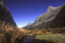 New Zealan, Southland, Fiordland National Park by Jason Friend