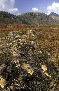 Norway, Sogn Og Fjordane, Jotunheimen National Park. by Jason Friend