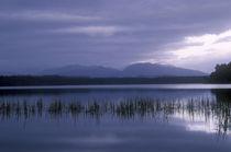 New Zealand, West Coast,Lake Mahinapua by Jason Friend