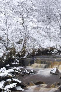 Scotland, Scottish Borders, Liddesdale. by Jason Friend