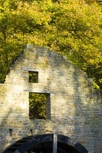 Mabel'S Mill, A Water Corn Mill Of The Ridleys by Jason Friend