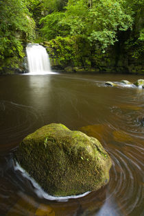 England, North Yorkshire, North York Moors National Park. by Jason Friend