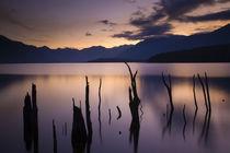 New Zealand, Fiordland, Fiordland National Park. by Jason Friend