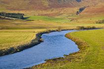 Scotland, Scottish Borders, Ettrick Valley by Jason Friend