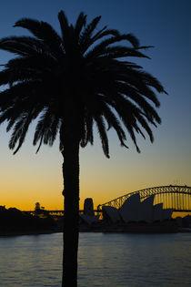 Australien, New South Wales, Sydney von Jason Friend