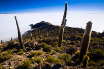 Bolivia, Southern Altiplano, Salar De Uyuni. by Jason Friend