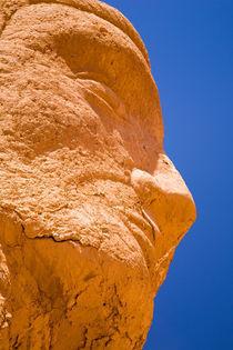 Chile, Atacama Desert, Plaza Quitor. by Jason Friend