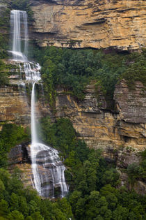 Australien, New South Wales, Blue Mountains National Park. von Jason Friend
