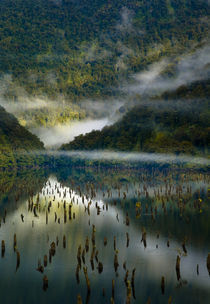'New Zealand, Southland, Fiordland National Park.' by Jason Friend