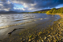 Scotland, Stirling, Loch Lomond And The Trossachs National Park. by Jason Friend
