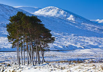Schottland, Schottische Highlands, Dirrie Mehr. von Jason Friend
