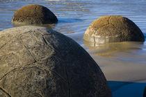 New Zealand, Otago, Moeraki Boulders. by Jason Friend