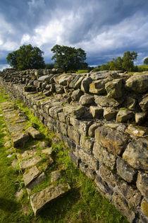 England, Cumbria, Gilsland. by Jason Friend
