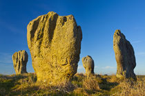 England, Northumberland, Duddo Five Stones. von Jason Friend