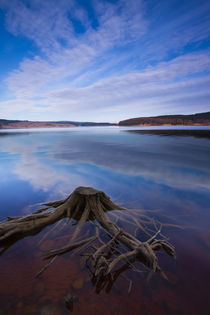 England, Northumberland, Kielder Water & Forest Park. von Jason Friend
