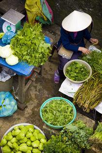 Vietnam, Northern Vietnam, Sapa. by Jason Friend