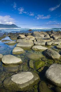 New Zealand, Southland, Fiordland National Park by Jason Friend