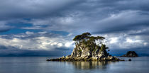 New Zealand, Nelson, Abel Tasman National Park. by Jason Friend