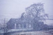 Scotland, Scottish Borders, Glentude Hill. by Jason Friend