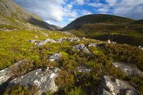 Scotland, Scottish Highlands, Cairngorms National Park. by Jason Friend