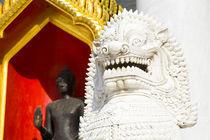 Thailand, Bangkok, Wat Benchamabophit. von Jason Friend