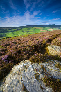 England, Northumberland, Rothbury. by Jason Friend