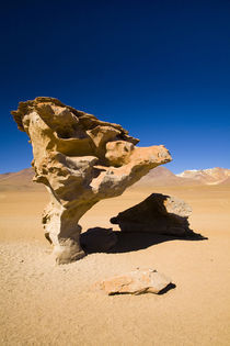 Bolivien, Southern Altiplano.,